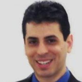 Michael J Pellegrini